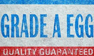 Managing Vendor Quality